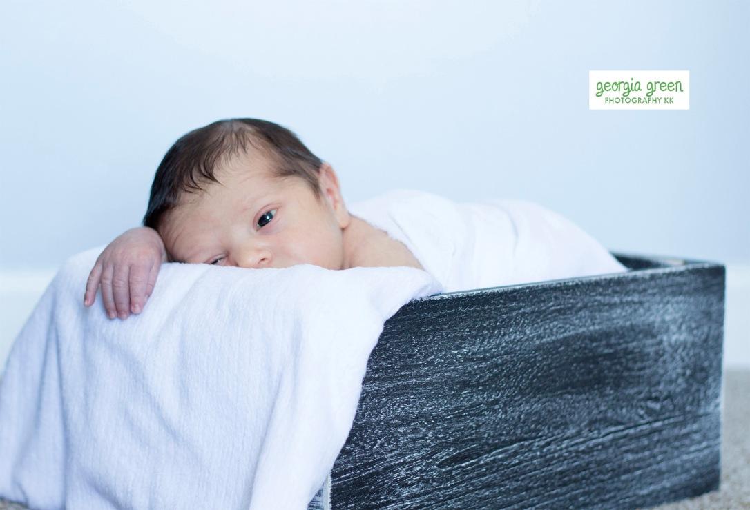 newbornphotography 2