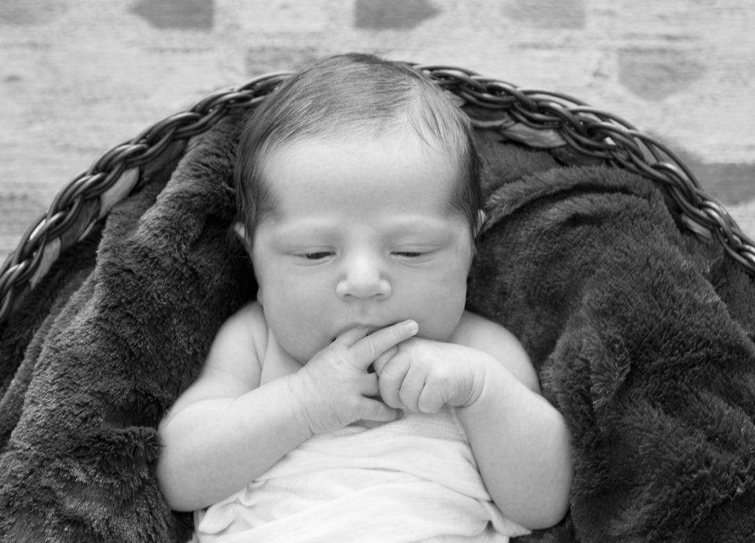 Newborn Baby Boy Photography 7