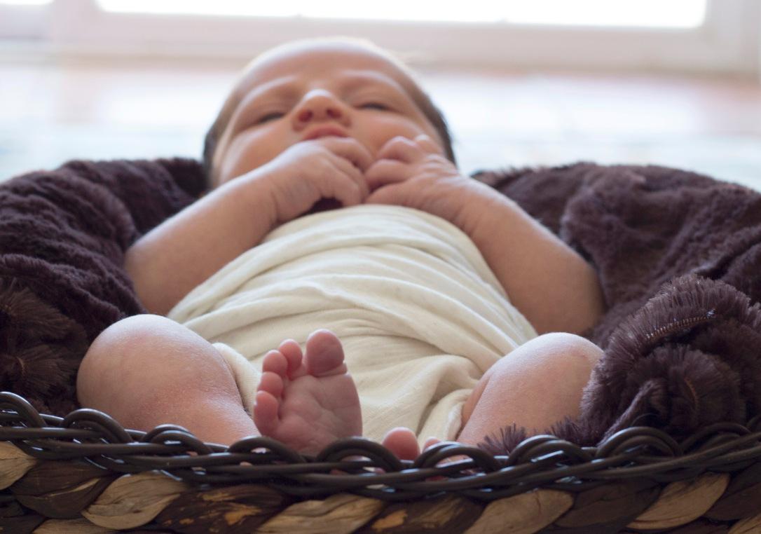 Newborn Baby Boy Photography 5