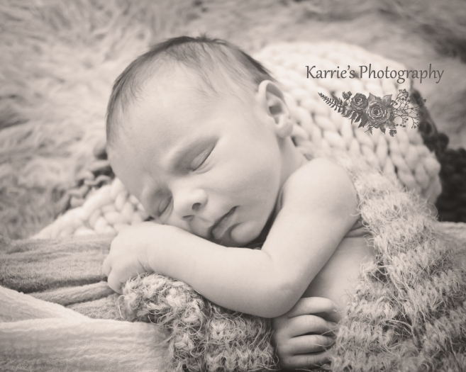 Karrie's Photography Newborn Portraits